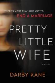 Pretty little wife : a novel