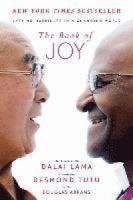 The book of joy lasting happiness in a changing world [Book Group Kit]