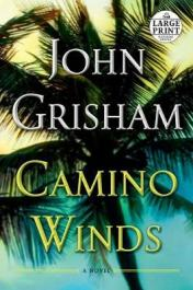 Camino winds : [a novel]