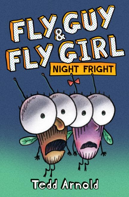 Fly Guy & Fly Girl : night fright