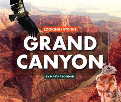 Looking into the grand canyon
