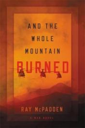 And the whole mountain burned : a war novel