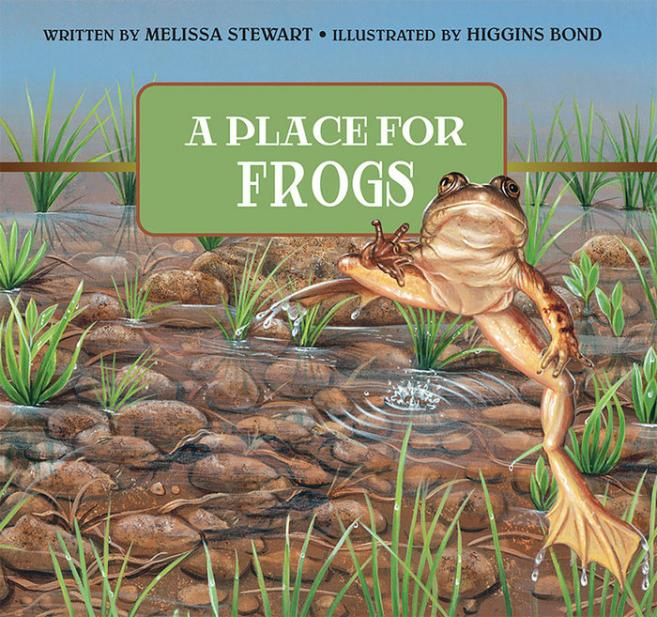 Place for frogs