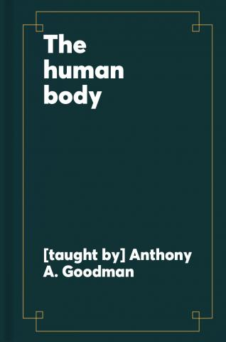 The human body : how we fail, how we heal