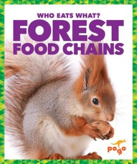 Forest food chains