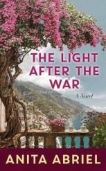 The light after the war : a novel